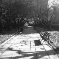 The Curious Ghost of Conservatory Garden